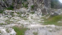 Rock, Cliff, Vegetation, Plant, Grass, Wilderness, Bush, Tree, Ground, Landscape, Mountain, Mountain Range, Peak, Land, Female