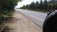 Road, Vehicle, Automobile, Car, Motorcycle, Path, Freeway, Highway, Wheel, Plant, Vegetation, Trail, Land, Tree, Sidewalk
