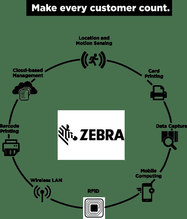 zebra-photo
