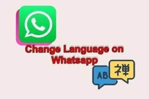 how i do change language on whatsapp android phone whatsapp