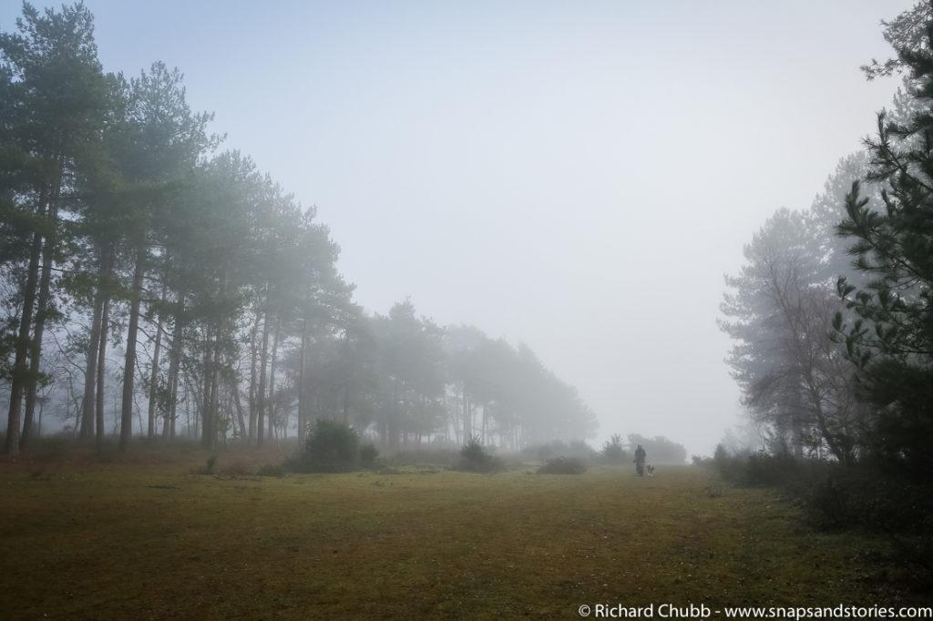 marchwood-walk-30-dec-1001