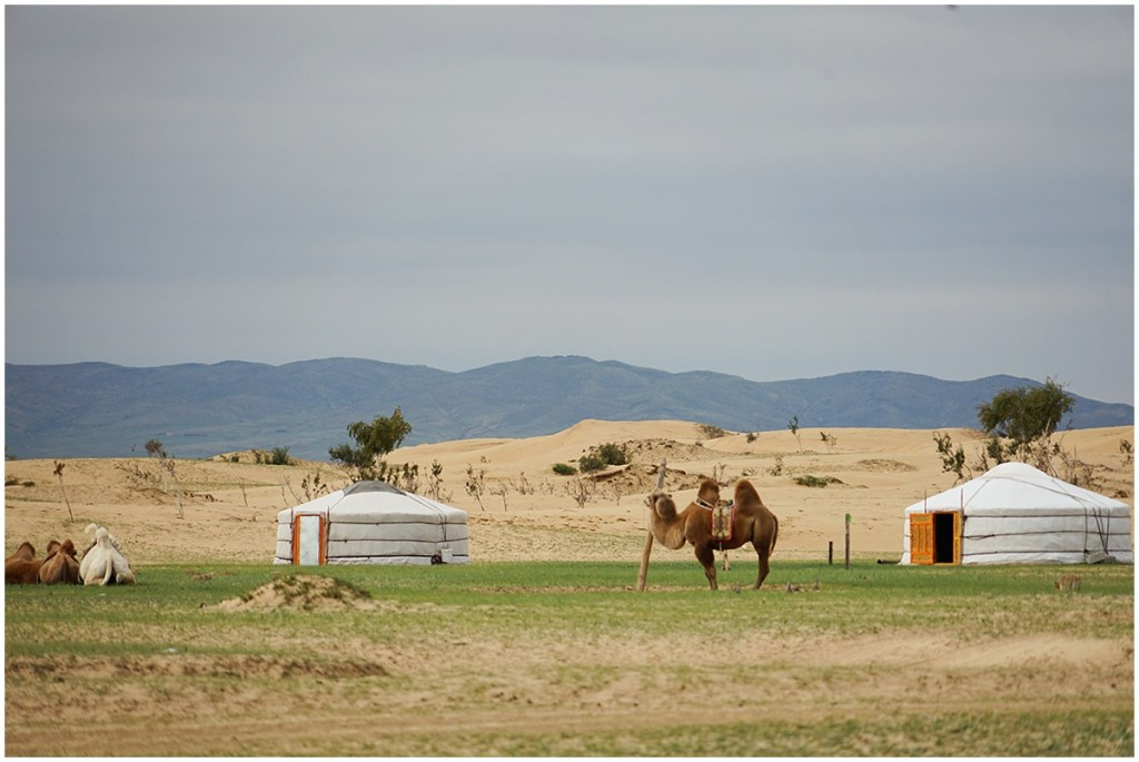 mongolia how to extend tourist visa
