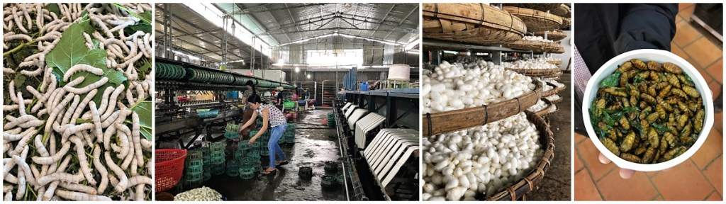 da lat silk factory tour