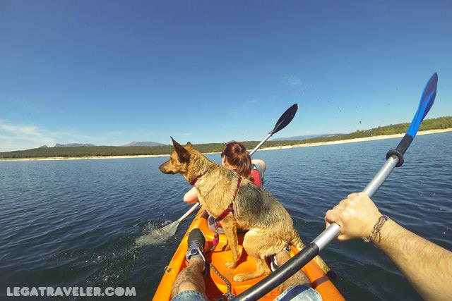 Aventuras caninas 10 zonas naturales para ba arse con - Banarse en madrid ...