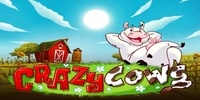 Free Crazy Cows Slot Play'n Go