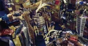 Exotic Materials