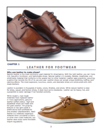 Chapter 1: Leather for footwear