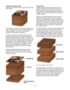 Shoe design handbook