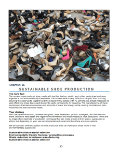 Sustainable Shoe Production