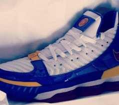 The Nike Lebron 16 SB Superman Leaks!