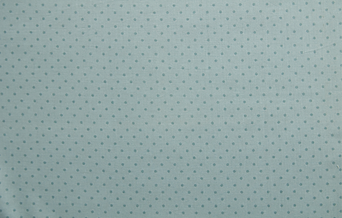 Blue polka dot fabric print
