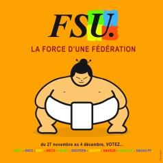 FSU Elections 2014