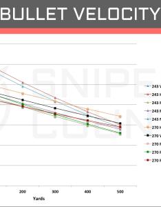 Bullet velocity win vs also  cartridge comparison sniper country rh snipercountry