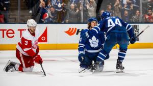Maple Leafs vs Wings