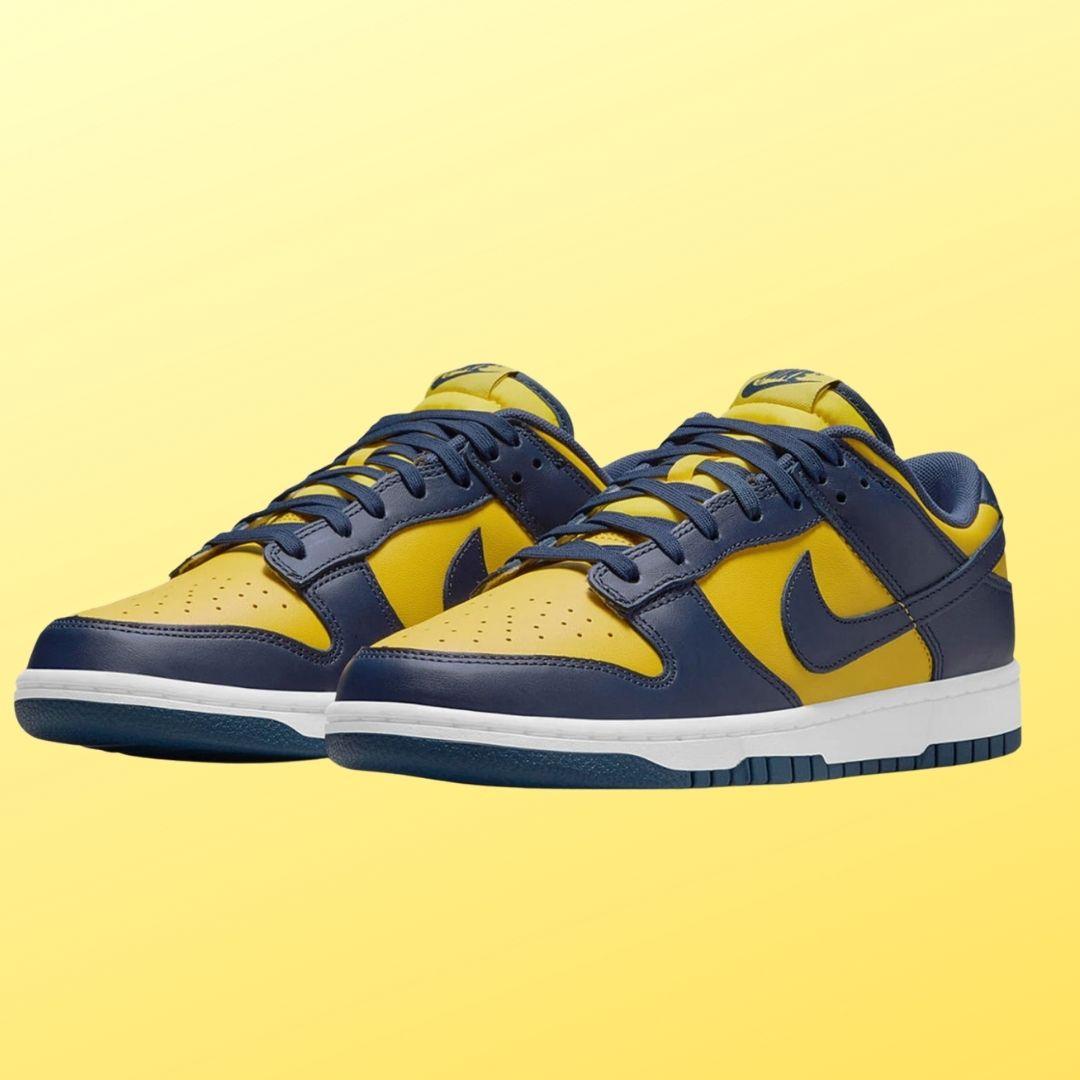 Nike Dunk Low Michigan-2