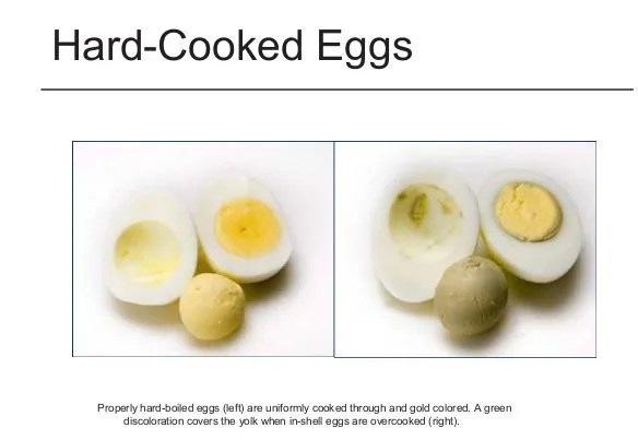FALSE: How to Tell the Difference Between Organic and GMO Eggs