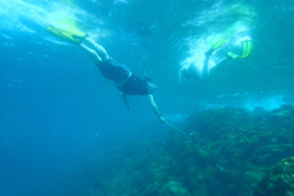 Snorkeltobago.com