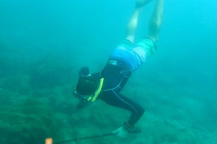 snorkelling photos