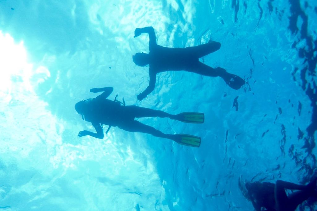 Zoe Snorkelling Tours