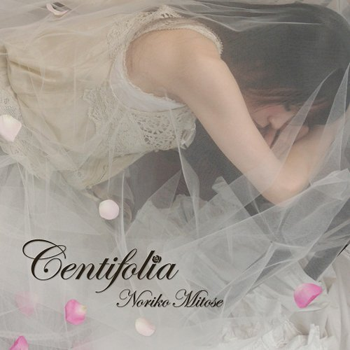 jk-centifolia