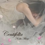 Centifolia