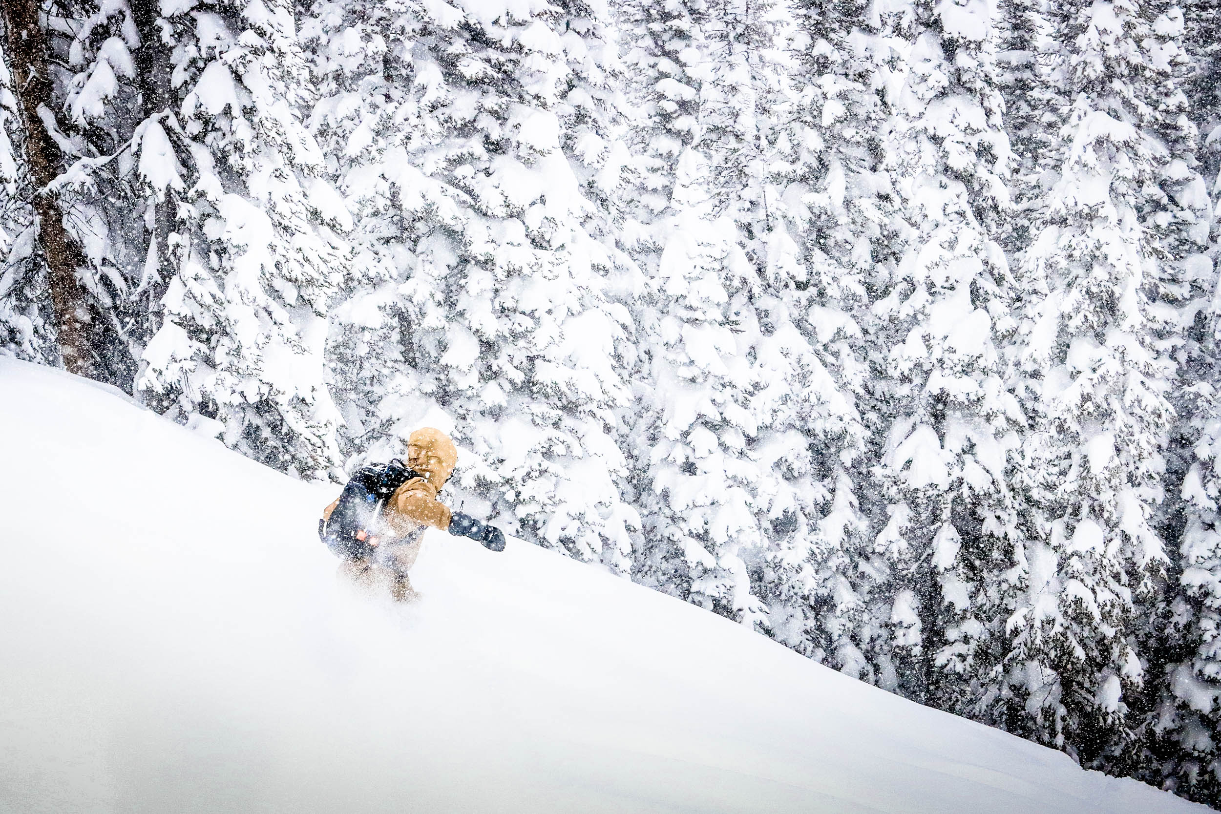 Powder board testing conditions don't get much better than this.. Click to view image.