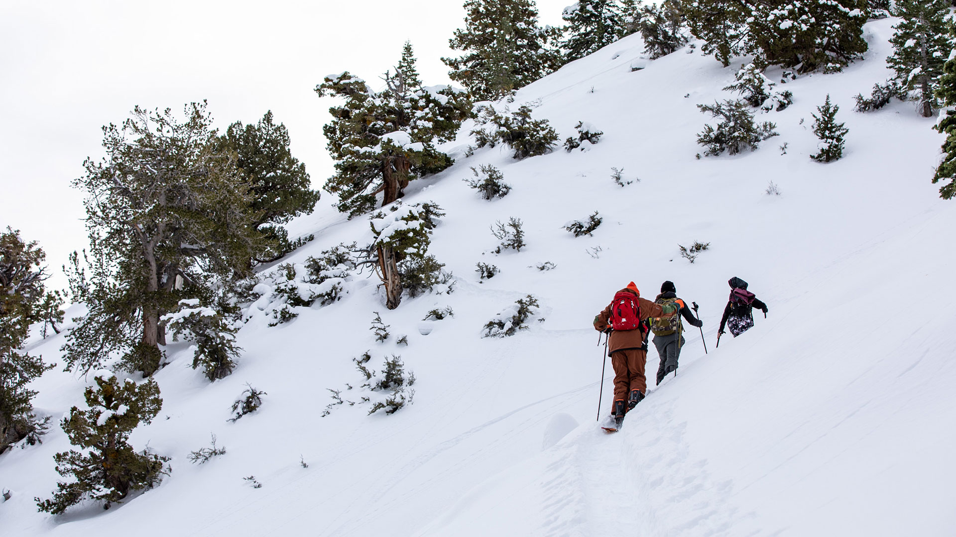 Snowboarder Triggers Avalanche in Colorado requiring 20+ Search and Rescue Volunteers | SNOWBOARDER Magazine