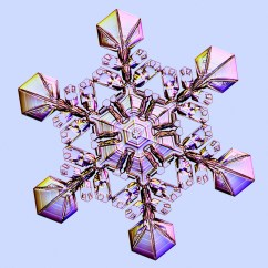 How A Freezer Works Diagram 03 Ford Expedition Stereo Wiring Designer Snowflakes - Snowcrystals.com