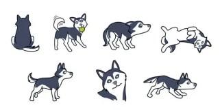 Husky Body Language