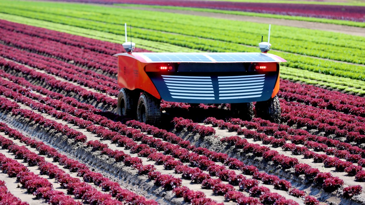 How AI And Machine Learning Can Help To Improve Global Agriculture
