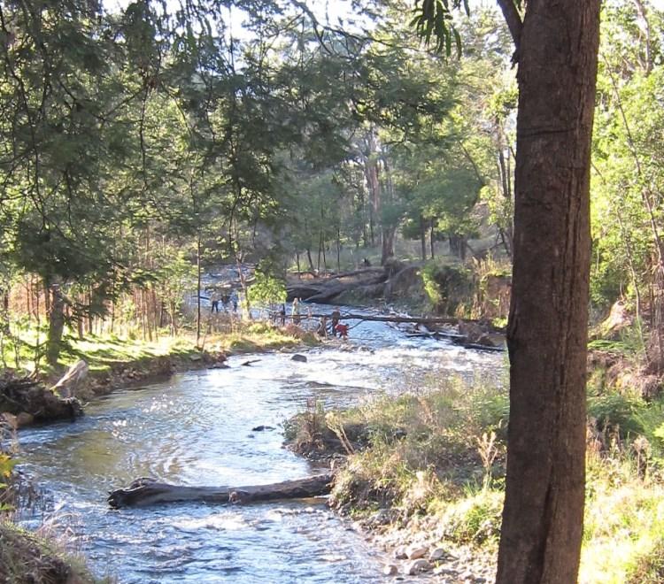 Ovens River fishing Harrietville near Bright