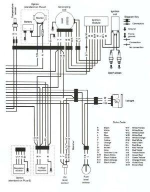Wireing Diagram 97 Ski Doo Formula S   prandofacilco