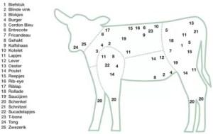 tekening vleesherkenning kalf