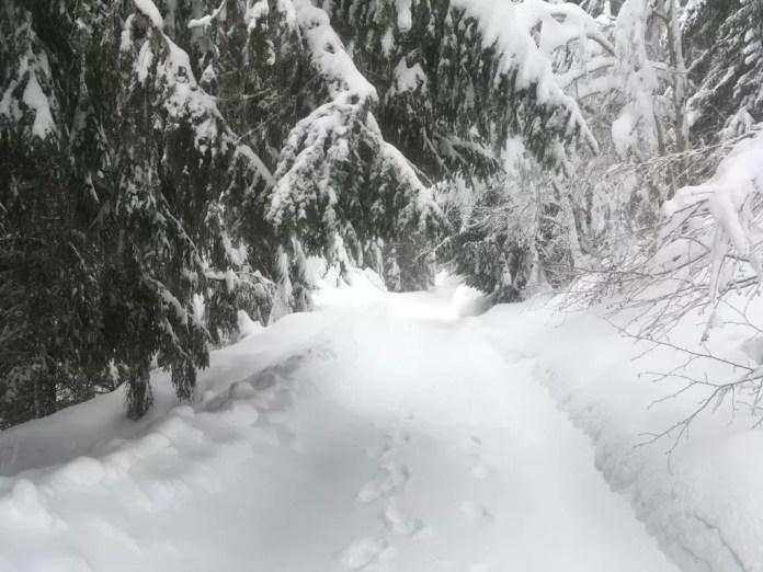 Winterwandelen - Skigebied Laax - Snowrepublic