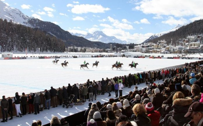 Snowpolo overview
