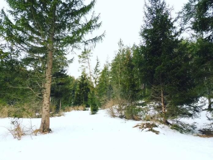 Wandelen: de 'genuss-route'
