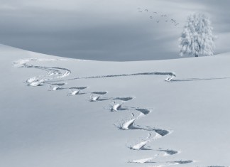 sneeuwschoenen
