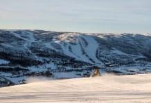 winterse natuurbeleving