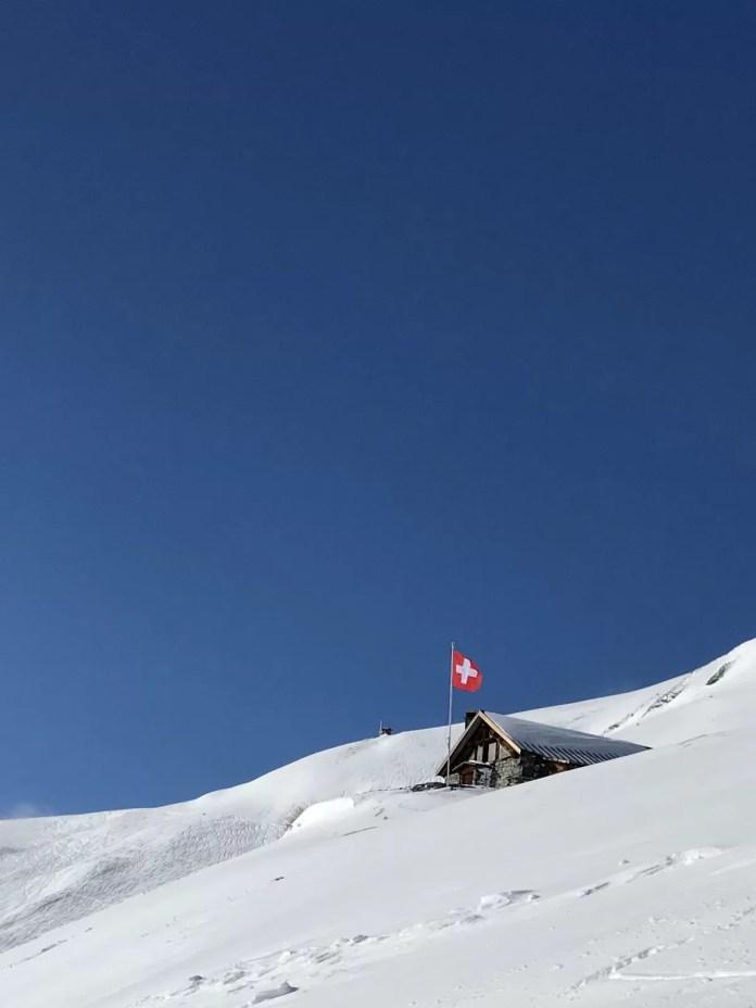 Rood, wit en blauw! Foto: Pauline van der Waal