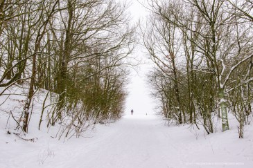 Winter in Geldeland. Foto: Edwin Hagenouw