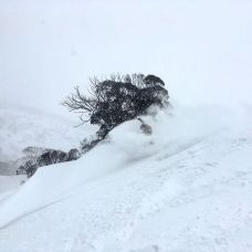 @stefanboers in the white room at Perisher