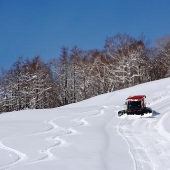 Shizukuishi operates Powder Cat Skiing runs from just ¥3500 a run. Photo by Hocking
