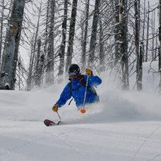 Powder tree skiing with CMH Heli Skiing
