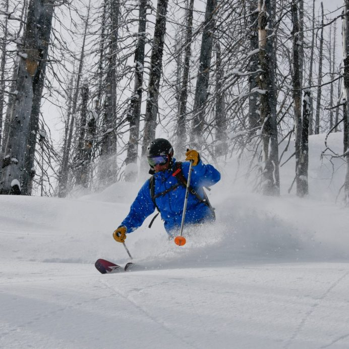 Powder tree skiing with CMH Heli Skiing