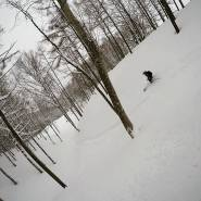 Image from Madarao Mountain Resort