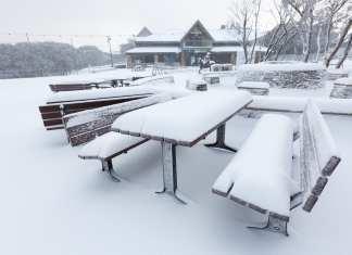 mt buller snow