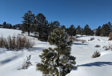 blue sky on Chama snowshoeing trail