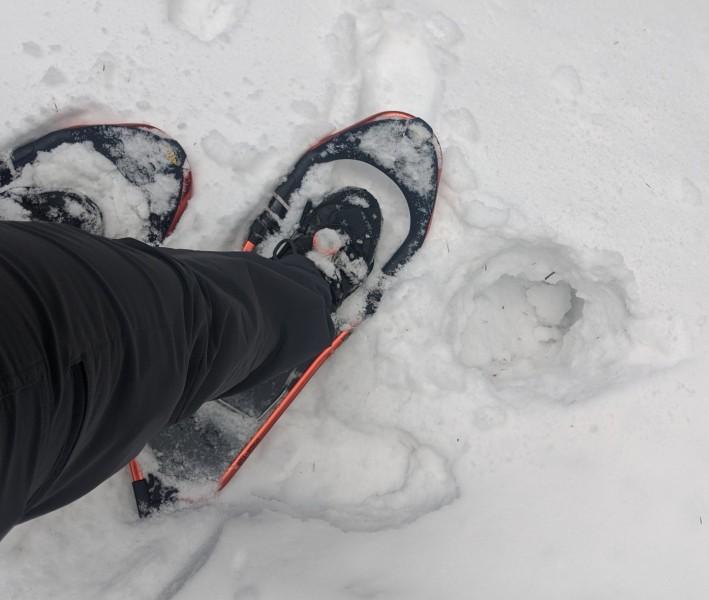 testing Atlas snowshoes