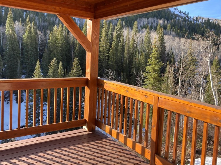 view off of balcony at Wild Skies Cabin in Colorado wilderness with trees in background