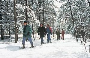 snowshoers on trail in Vermont